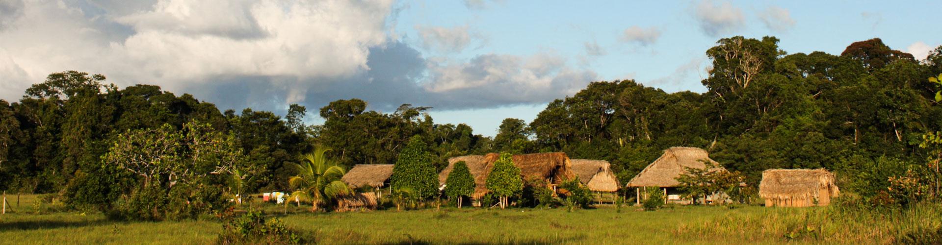 Foto: Dorf mit Strohdächern in Waldlandschaft
