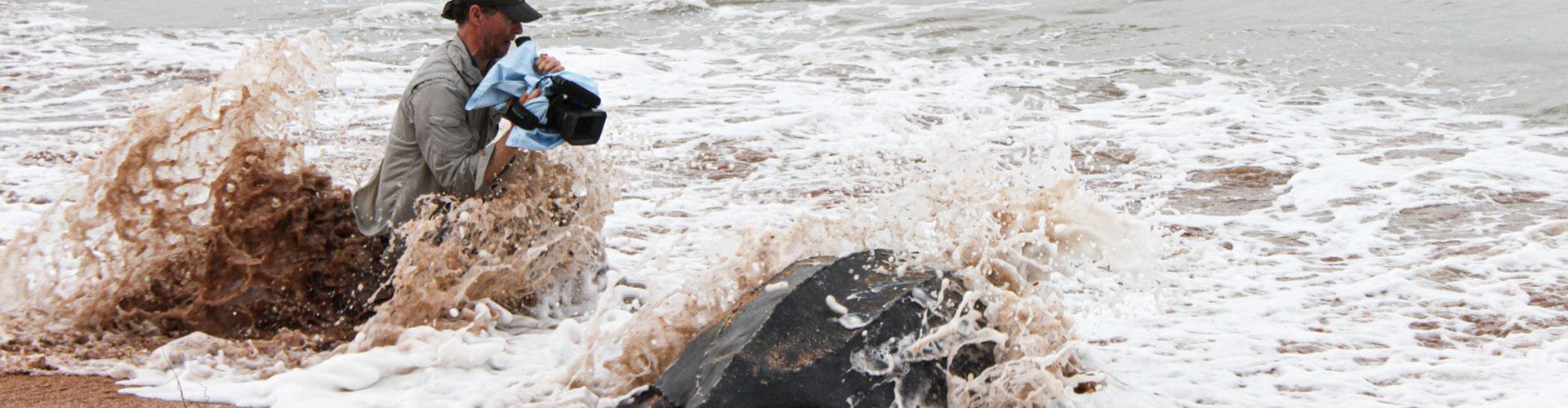 Foto: Kameramann filmt Riesenschildkröte in der Gischt an einem Strand