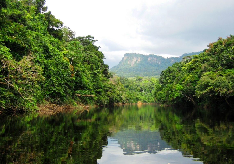 Foto: Landschaft im Regenwald - ein See im Vordergrund, Berge im Hintergrund