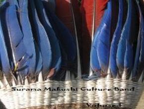 Foto: Federhaube mit blauen Federn