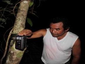 Foto: Mann richtet Fotofalle an einem Baum ein