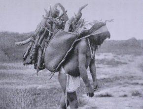 Foto: schwarz-weiß, Mann mit geerntetem Maniok auf dem Rücken