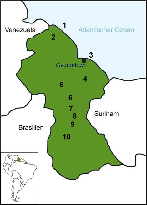 Grafik: Land Guyana grün mit Zahlen 1 - 10 durchsetzt, umgeben von schwarzen Grenzlinien und den Ländern Surinam, Brasilien, Venezuela u. Atlantischer Ozean